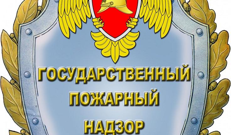 Государственный пожарный надзор - эмблема