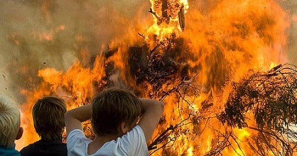 Что делать при пожаре в лесу