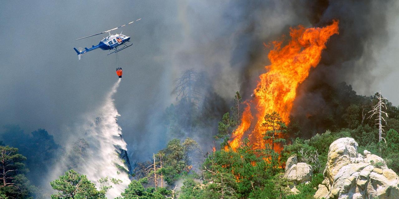 Локализация лесного пожара