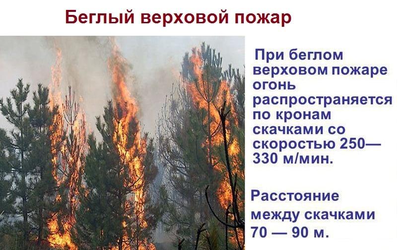 Скорость распространения бегового огня
