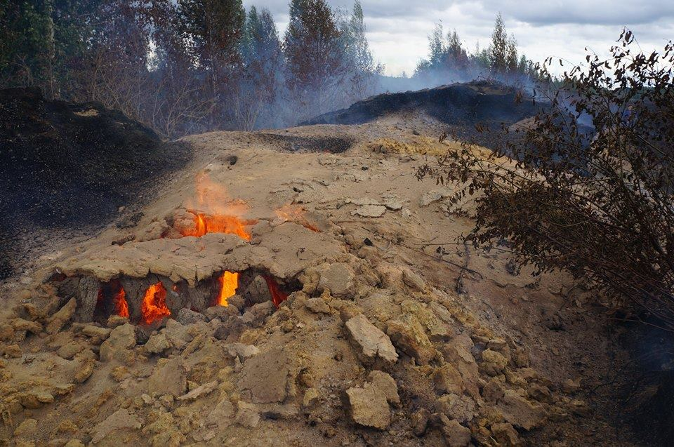 Неглубокий торфяной пожар