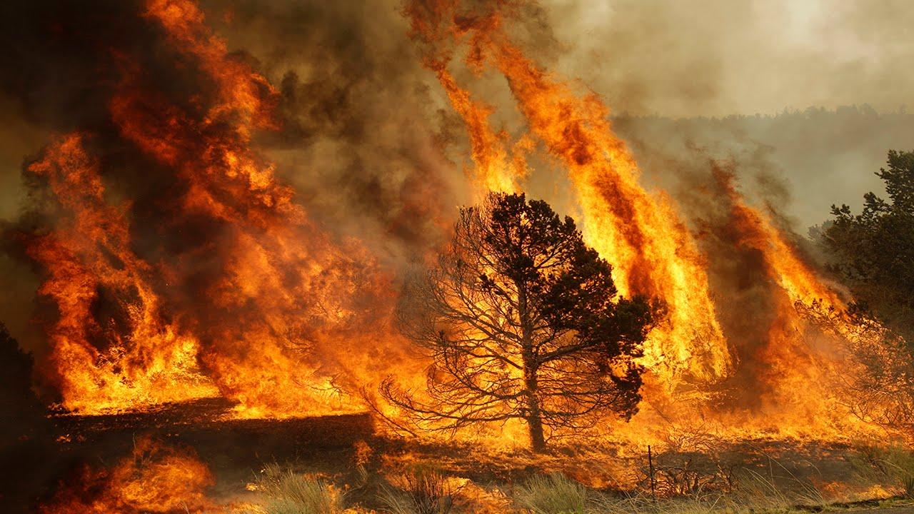 Пожар при сильном ветре